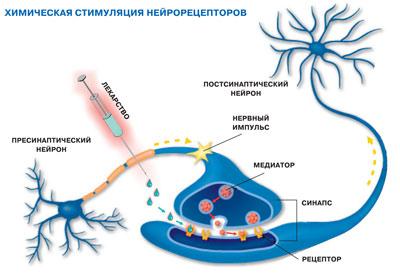 Посредством введения химических веществ воздействуют на нейрональные рецепторы, вызывая определённые эффекты возбуждения или торможения нейронов спинного мозга ниже уровня повреждения.