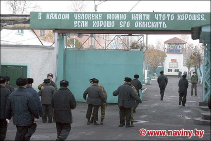 Колония № 14 в Новосадах