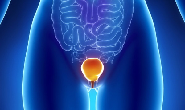 bladder_inflammation_ft_myers