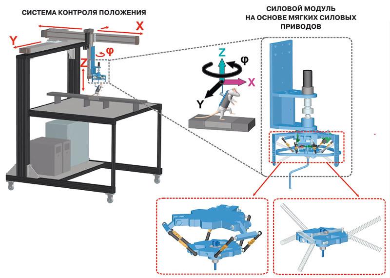 Двигательные навыки при параличе можно тренировать с помощью специально сконструированной робототехнической системы. Робот при необходимости поддерживает и контролирует перемещения животного по трём направлениям (x, y, z) и вокруг вертикальной оси (φ