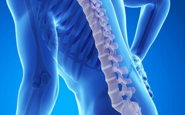 Терапия стволовыми клетками эффективна при лечении травм спинного мозга