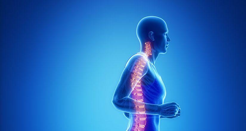 Ученые открыли гены, способные вылечить паралич после травмы спины